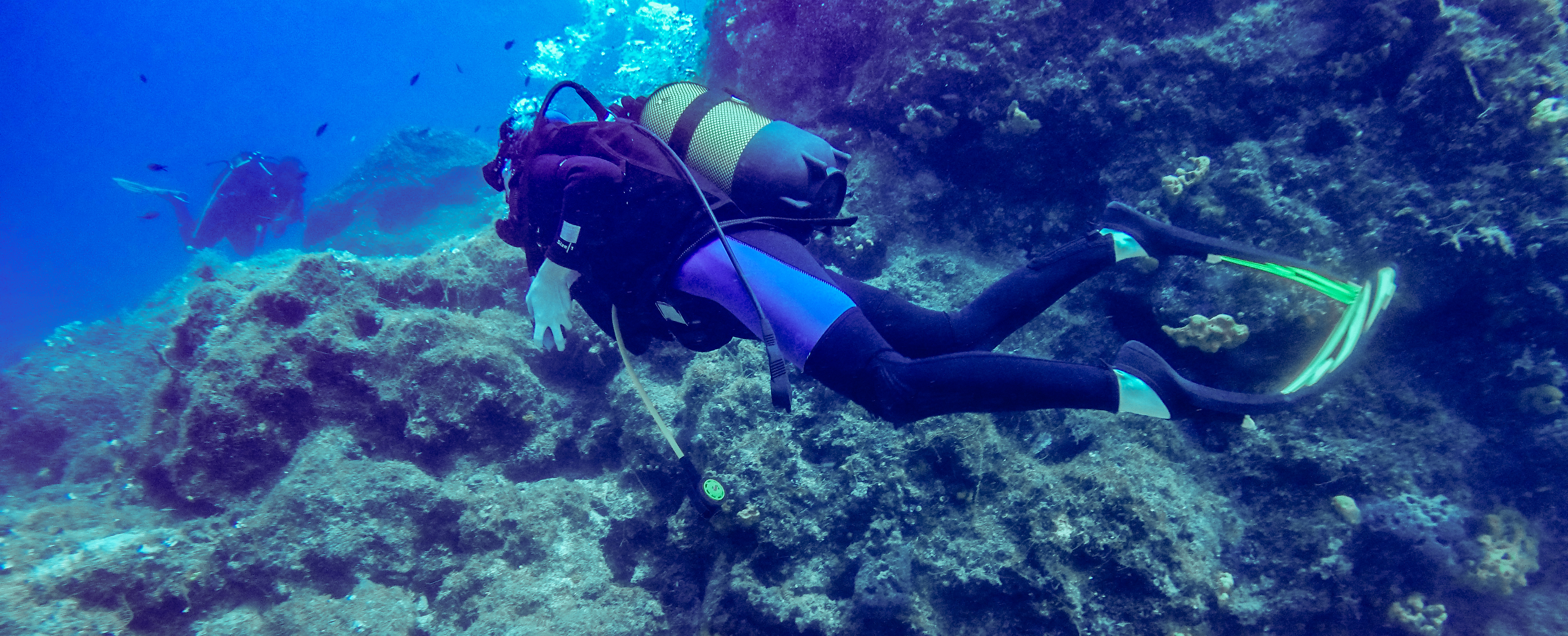 scuba diving You don't need certification for this incredible scuba diving adventure.